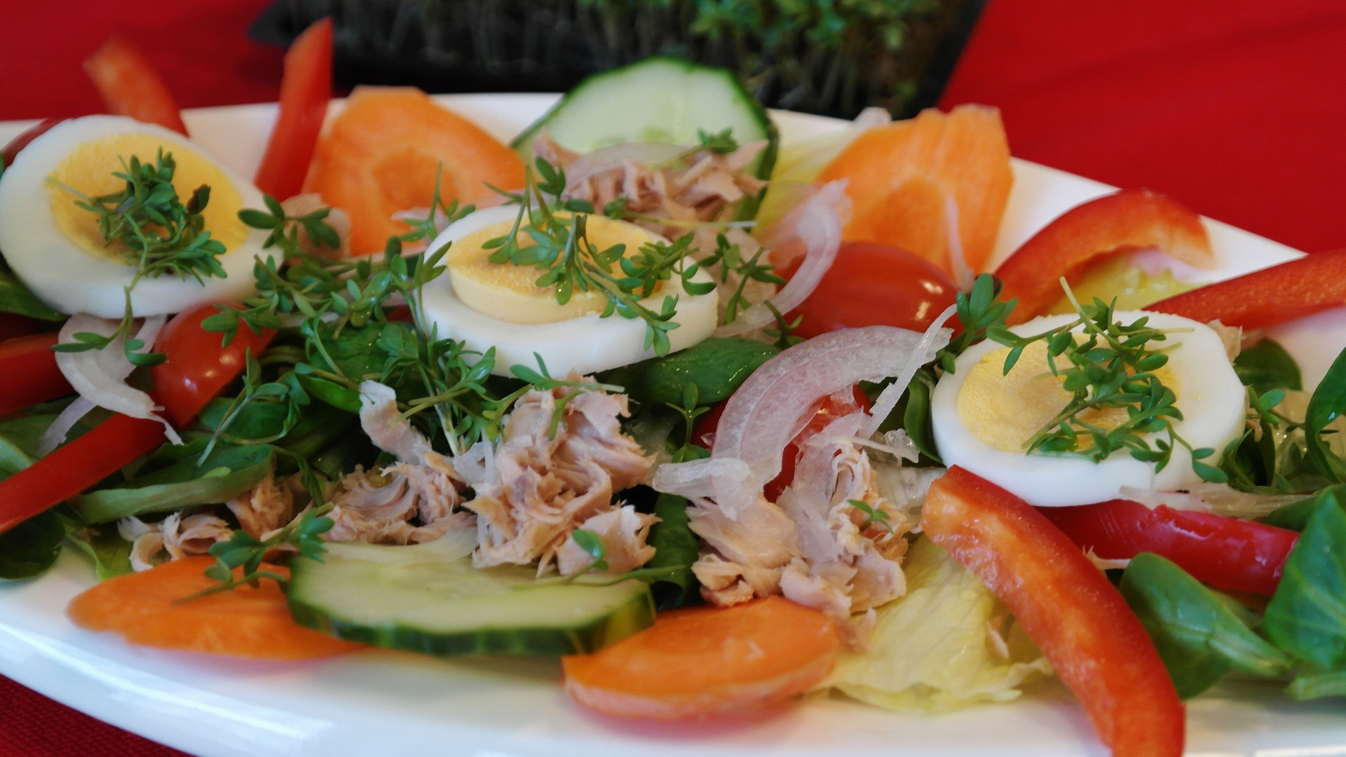 salad-686469_1920